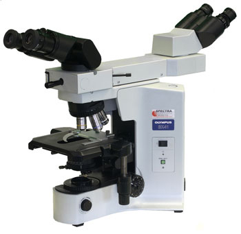 olympus bx41 dual viewing microscope spectra services inc rh spectraservices com  olympus bx41 user manual